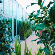 Jardim Campo Fotos-15